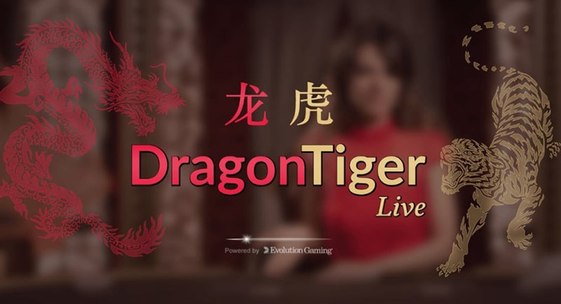 situs agen judi live casino dragon tiger online terpercaya indonesia uang asli
